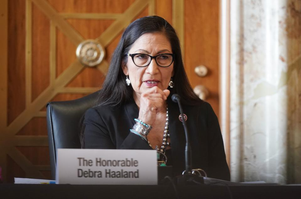 Senate Energy And Natural Resources Committee Examines Nomination Of Debra Haaland For Interior Secretary