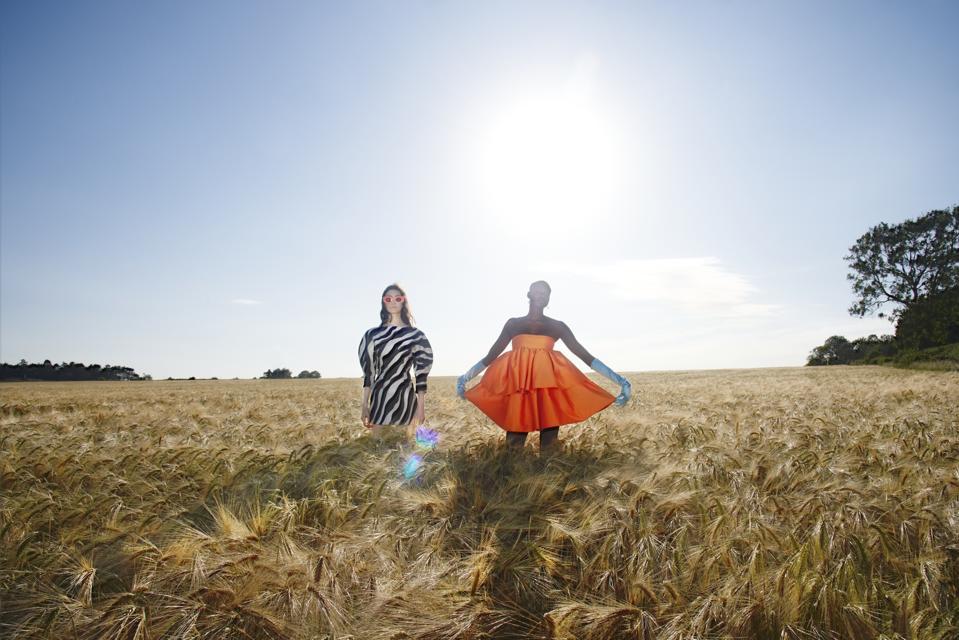 two models in a field of wheat plants wearing orange and zebra dresses