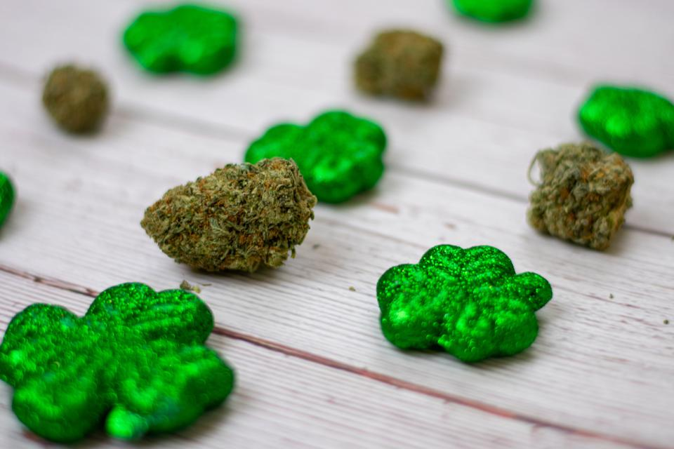 Akerna's cloud-based cannabis tech MJ Freeway has released data on Saint Patrick's Day and stimulus check sales. The numbers are the highest so far this year.