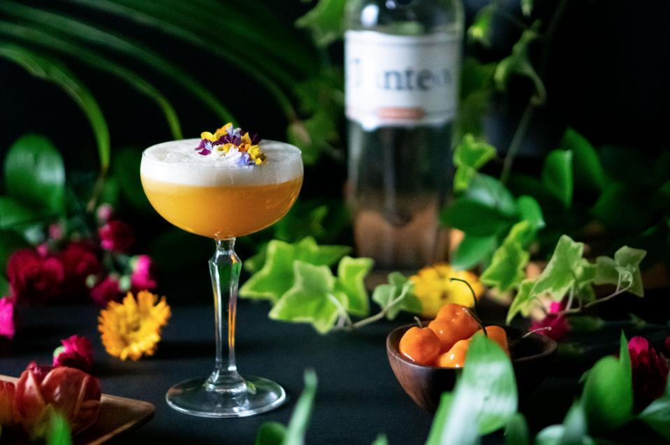 Best Margarita Recipes