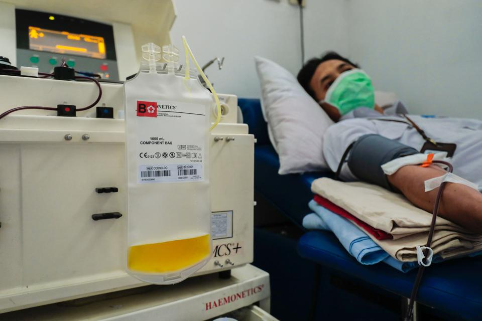 Plasma Convalescent donor in Indonesia