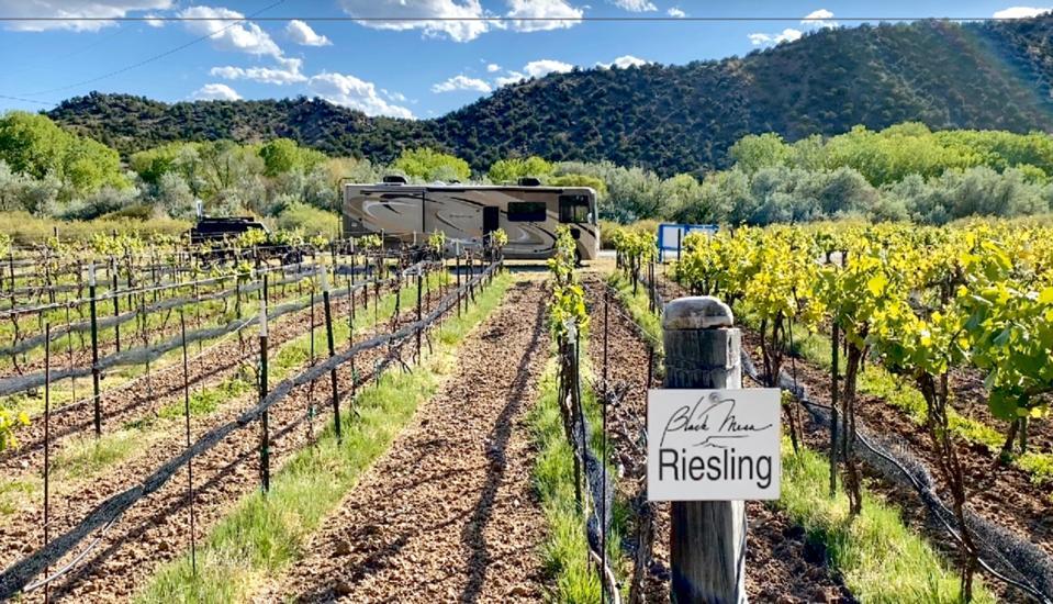 Van in a vineyard labeled Riesling