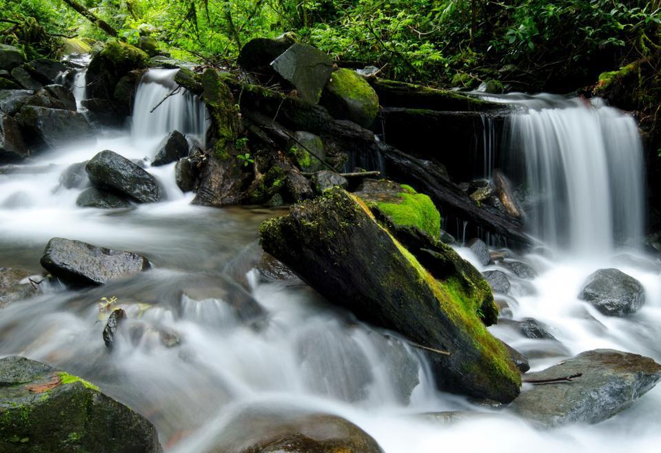 The natural wonder of Panama
