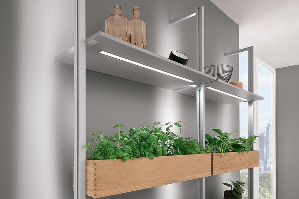 Plant holder on kitchen shelves.