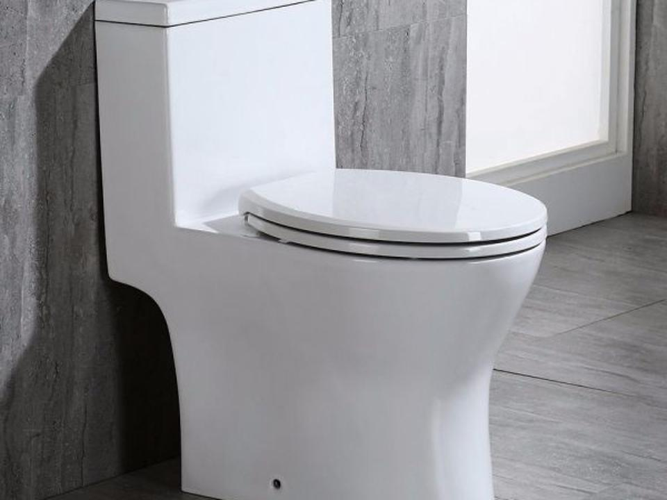 Woodbridge Bristol Dual-Flush Toilet