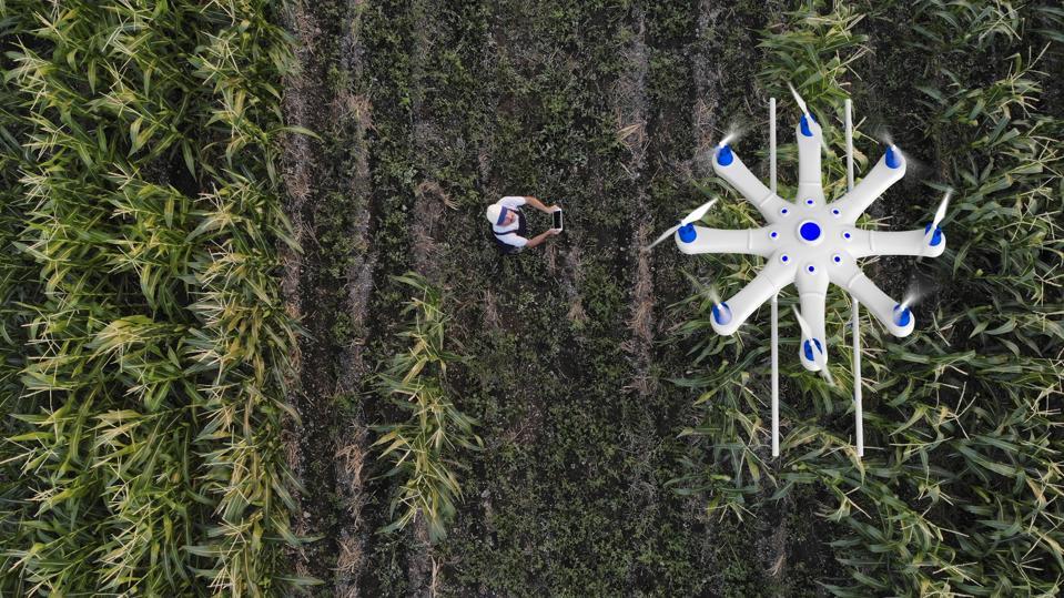 Drones and Environmental Monitoring