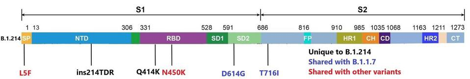 Mutations to the B.1.214 spike protein