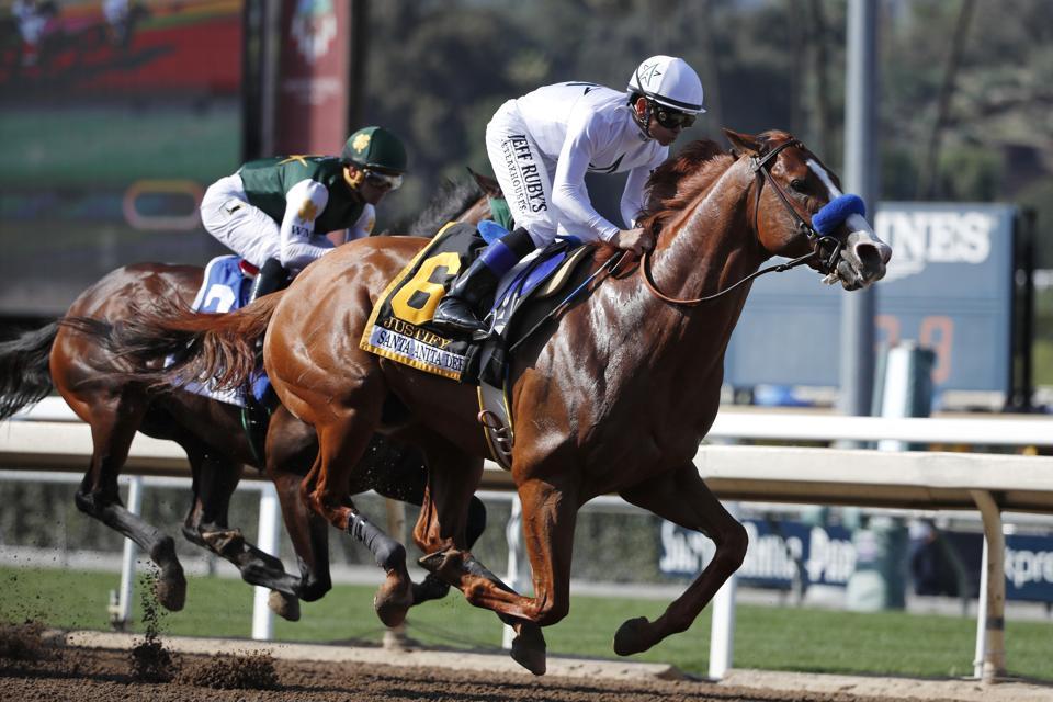 Derby Preps Horse Racing