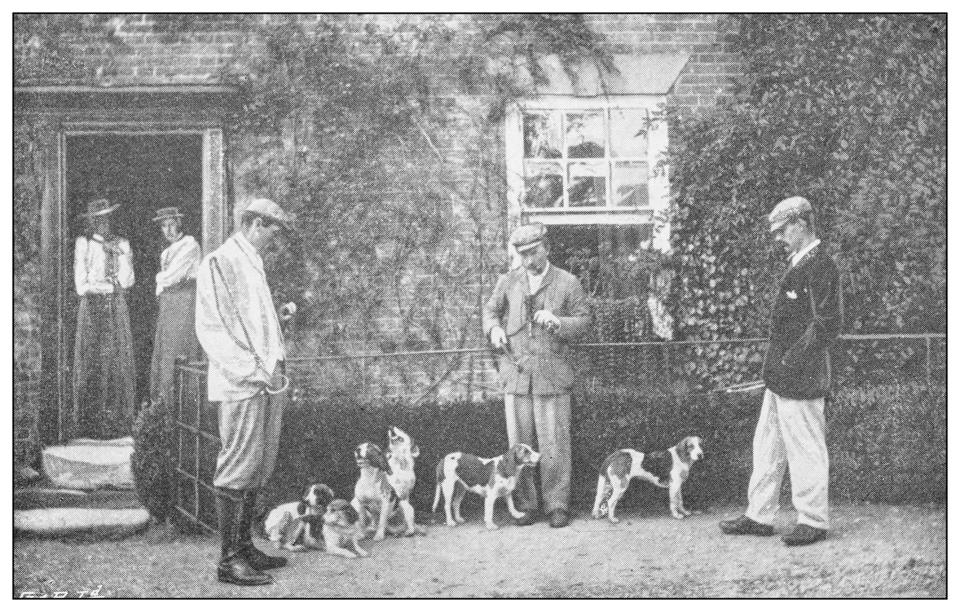 Antique black and white photograph of sport, athletes and leisure activities in the 19th century: Beagling, rabbit and hare hunting