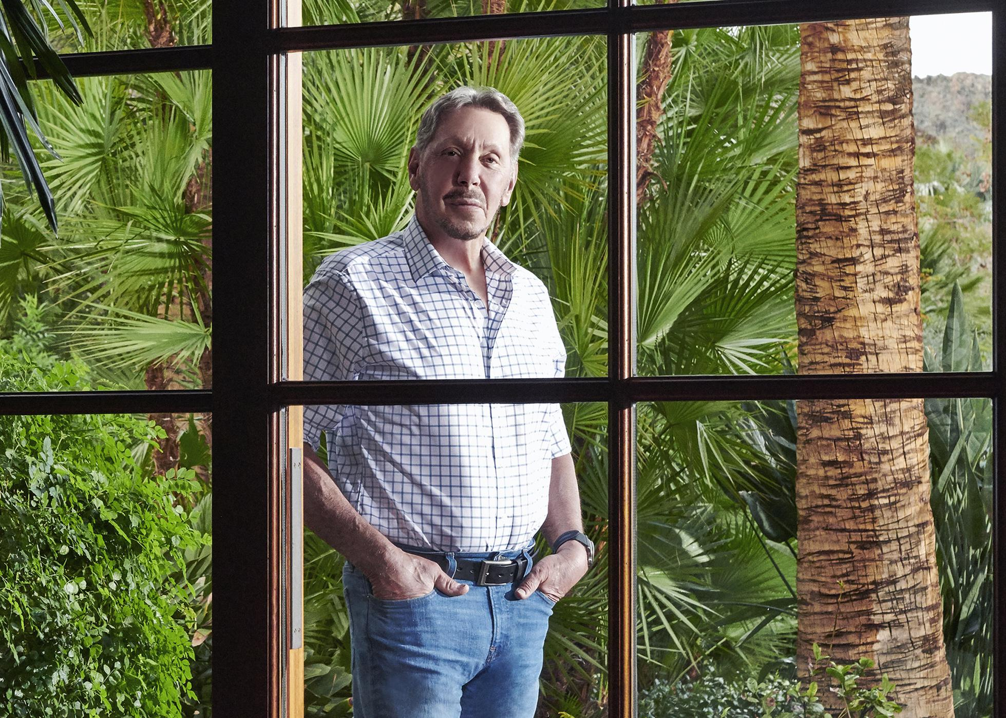 White man with gray hair surrounded by palm trees facing a window.