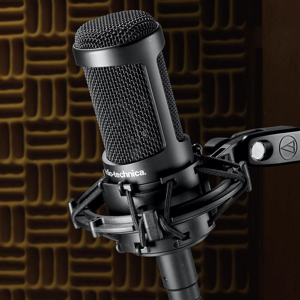 View of AT2035 microphone