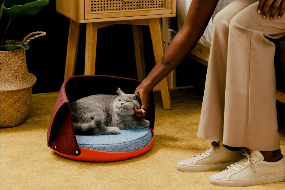 The Best Mother's Day Gifts For 2021: Cat Person Canopy Cat Bed