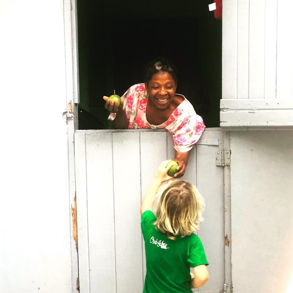 kids tropical fruit market Caribbean