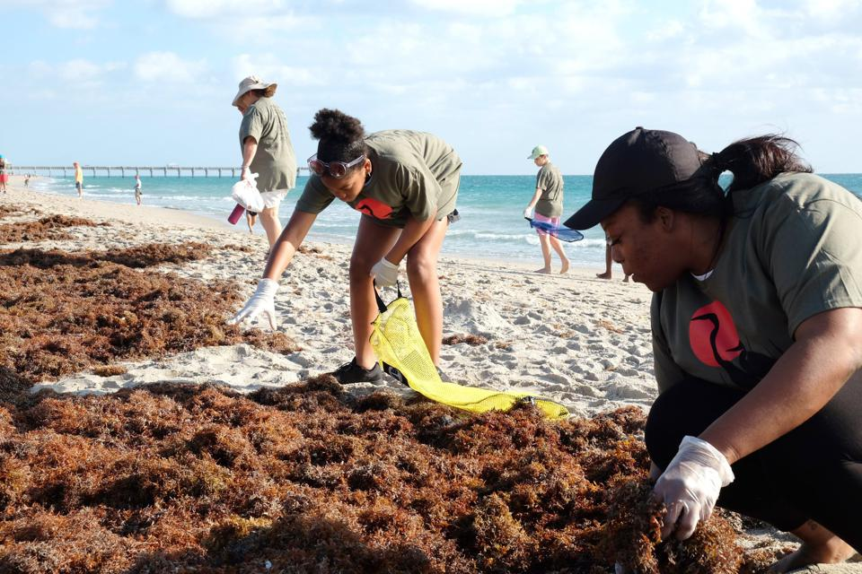 Volunteers collect litter along the beach with Keep Palm Beach County Beautiful in Florida.