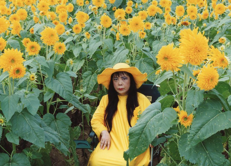 Artist Kusama surrounded by sunflowers