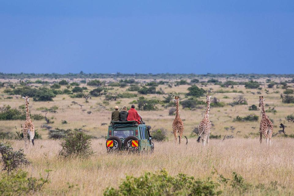 A game drive from Siruai Mobile Camp in Kenya.