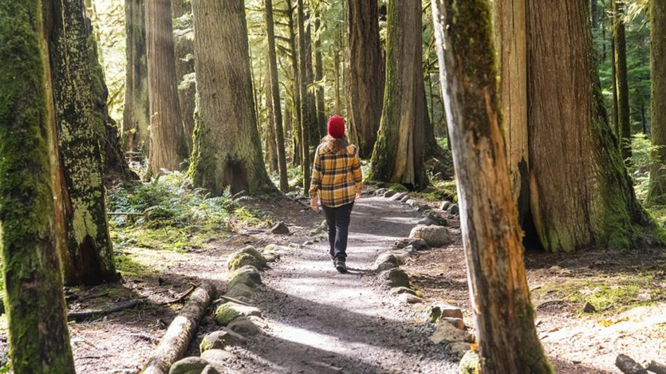 Woman walking on the trail to Tamolitch Falls - Blue Pools, Linn county, OR, US.