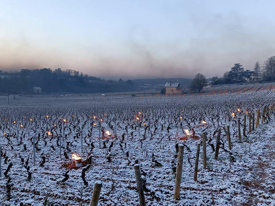 French vineyard with snow and candels
