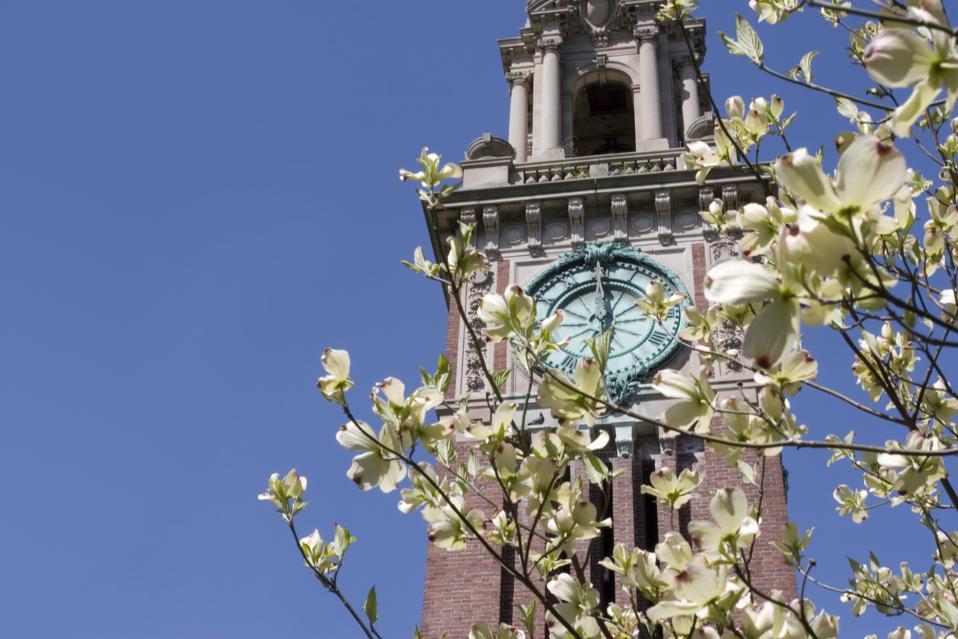 Brown University springtime