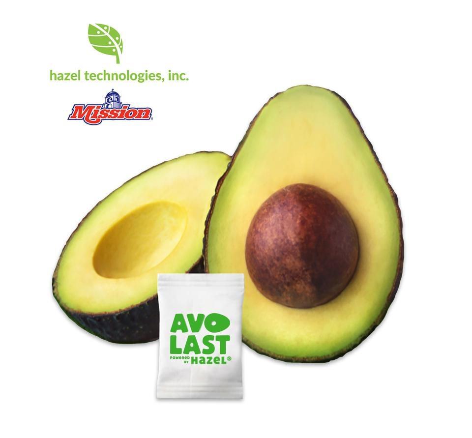 Haas avocado s last longer when shipped with sachets produced buy Hazel Technologies