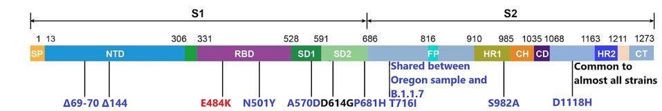 B.1.1.7-O spike mutations