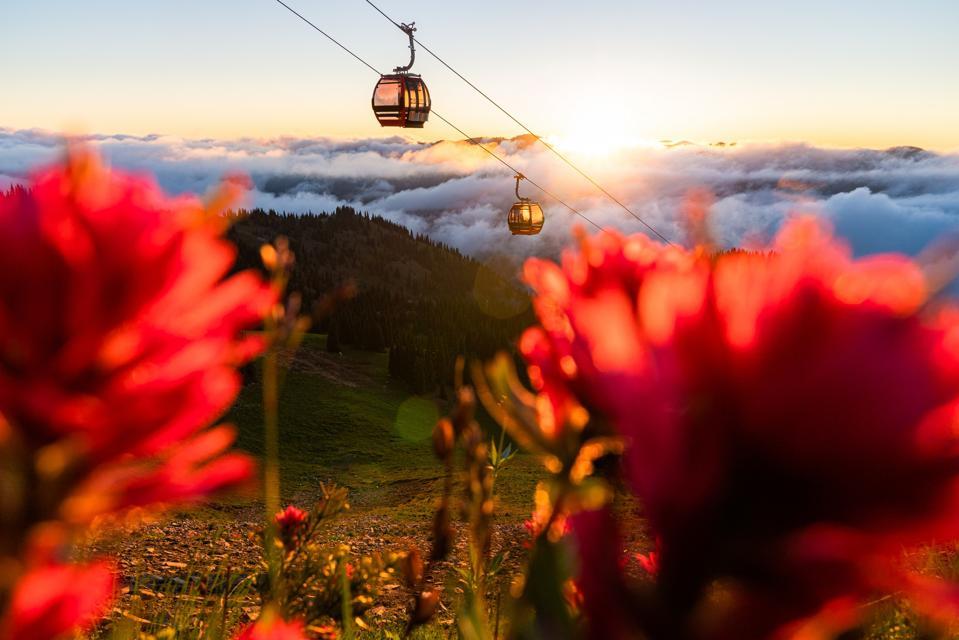 A gondola going up a mountain