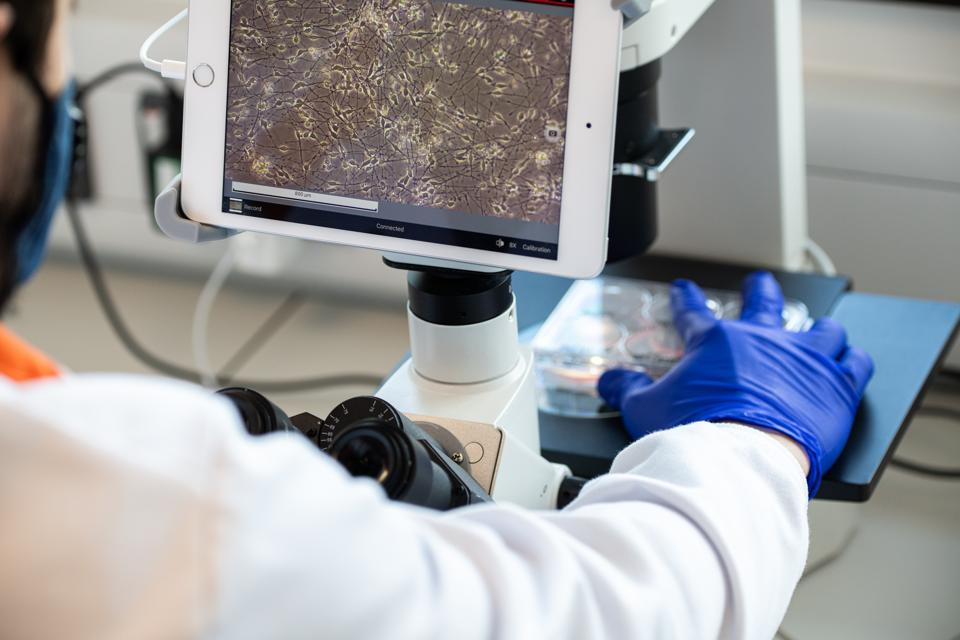 an arm with a white lab coat and blue gloves moves slides to look at under a ipad microscope display