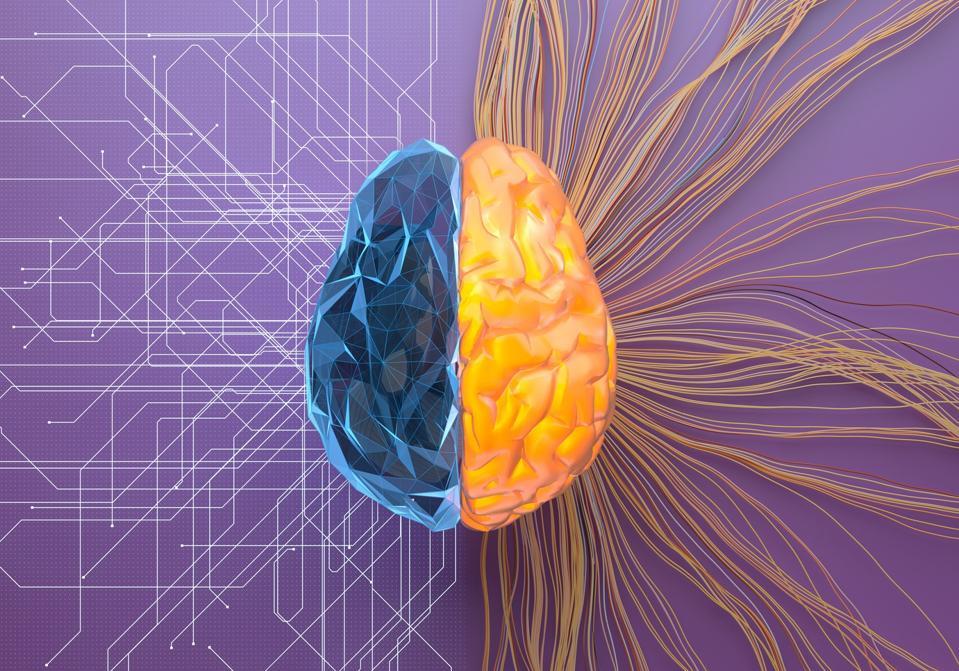 Split net/turbulence artificial brain