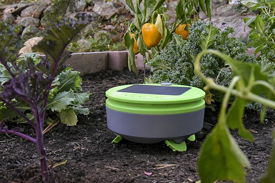 Tertill charging in a garden