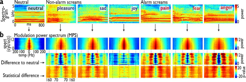 Acoustic spectrograms of six distinct types of screams.
