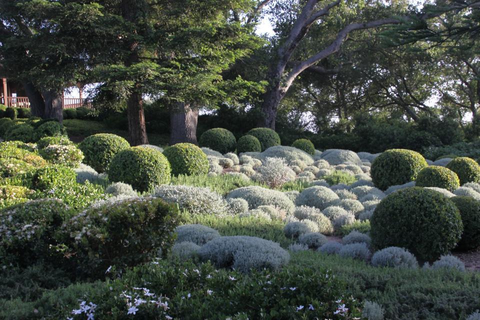 Private garden in California, USA