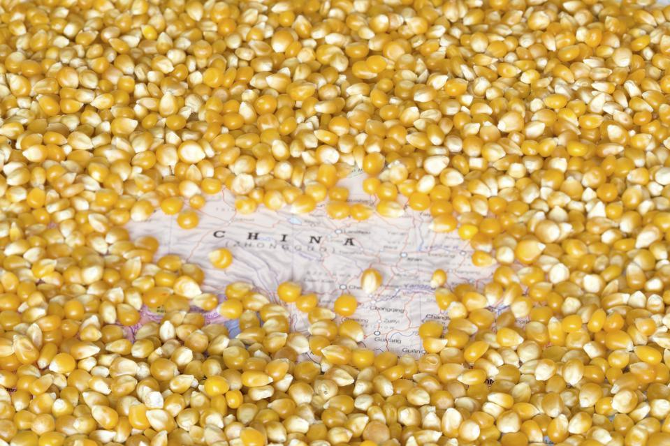 Map of China under a background of corn seeds