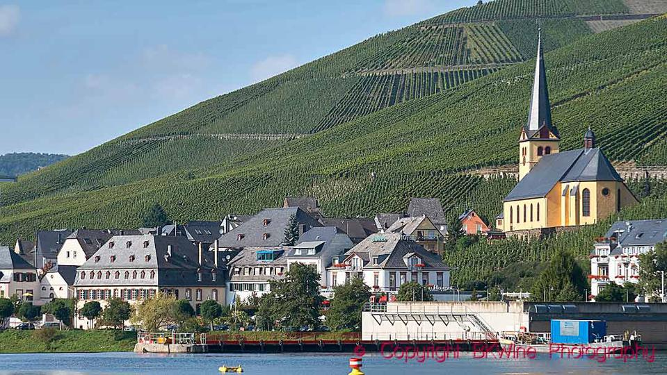 Vineyards on steep slopes and a village on the Mosel River, Germany