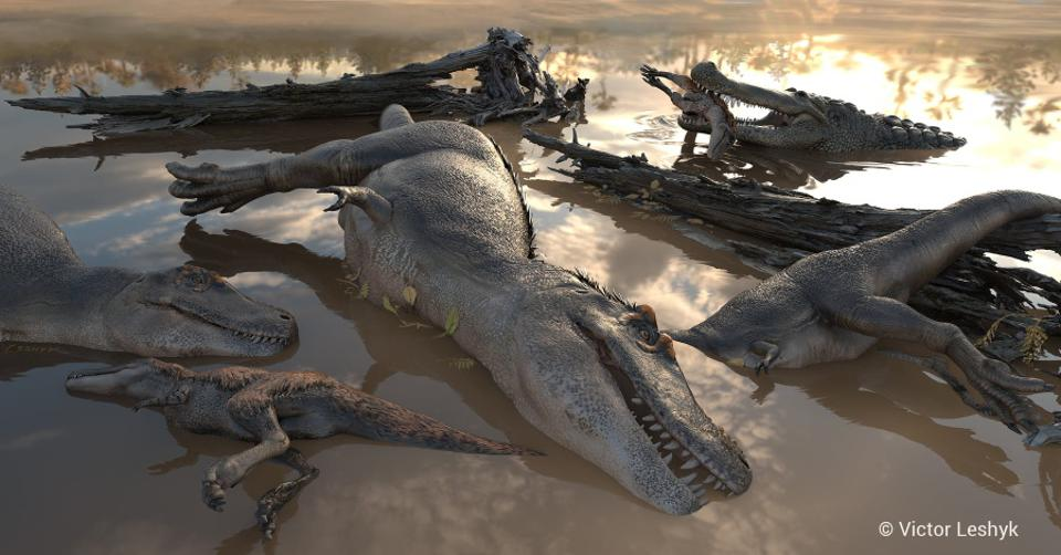76.4 million-years-ago in Utah, the dawn after a storm reveals a group of drowned theropod dinosaur lain softly together by floodwaters; a passing 30-ft Deinosuchus scavenges a drowned feathered youngster.