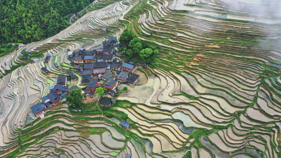 China Guizhou Jiabang Terraces