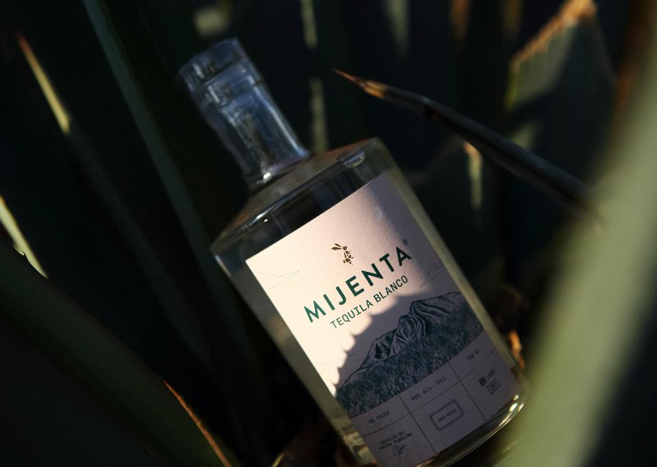 A bottle of Mijenta tequila amid agave leaves