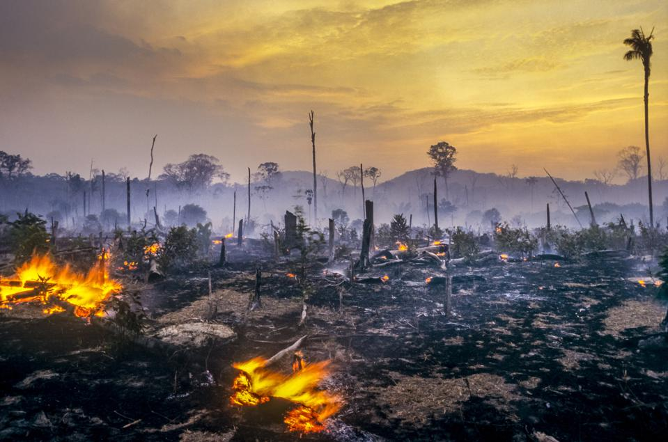 Deforestation fire in the Amazon.