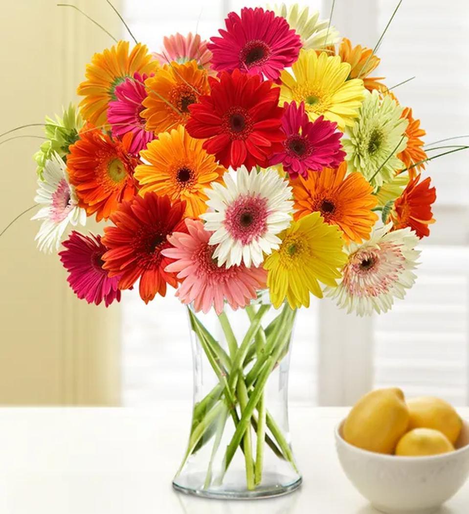Mother's Day flower deals: 1-800-Flowers Happy Gerbera Daisies