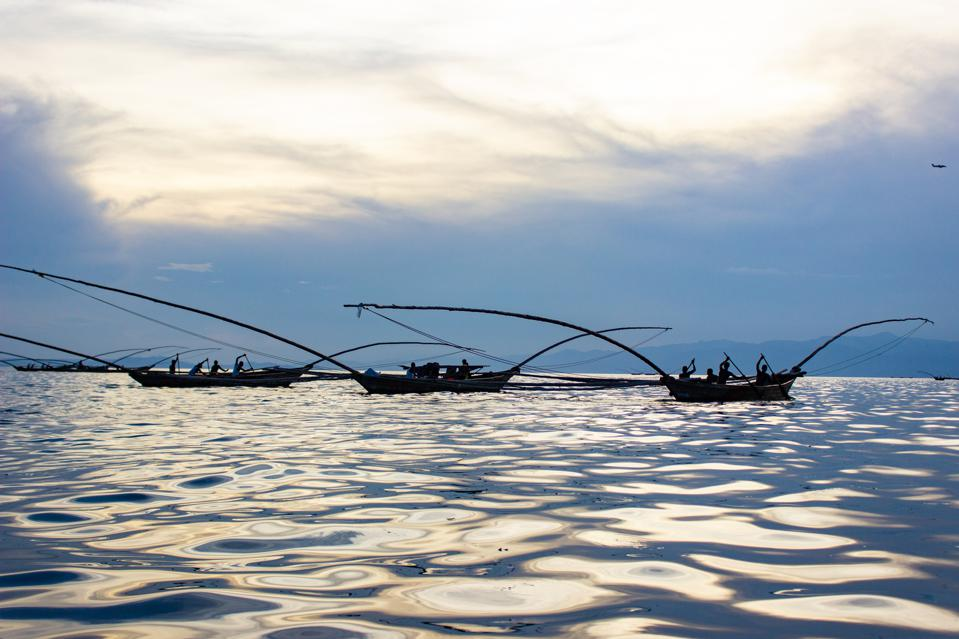 Several silhouetted fishing boats with elaborately longs bows and sterns are rowed by three to four fishermen in the evening sun