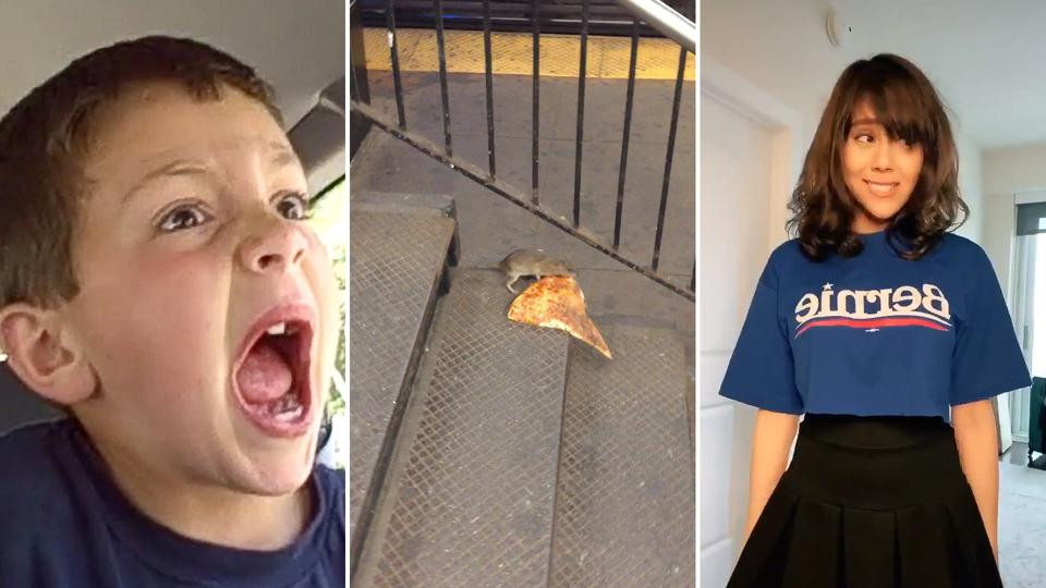 Collage of famous viral videos OK Boomer, David After Dentist and Pizza Rat