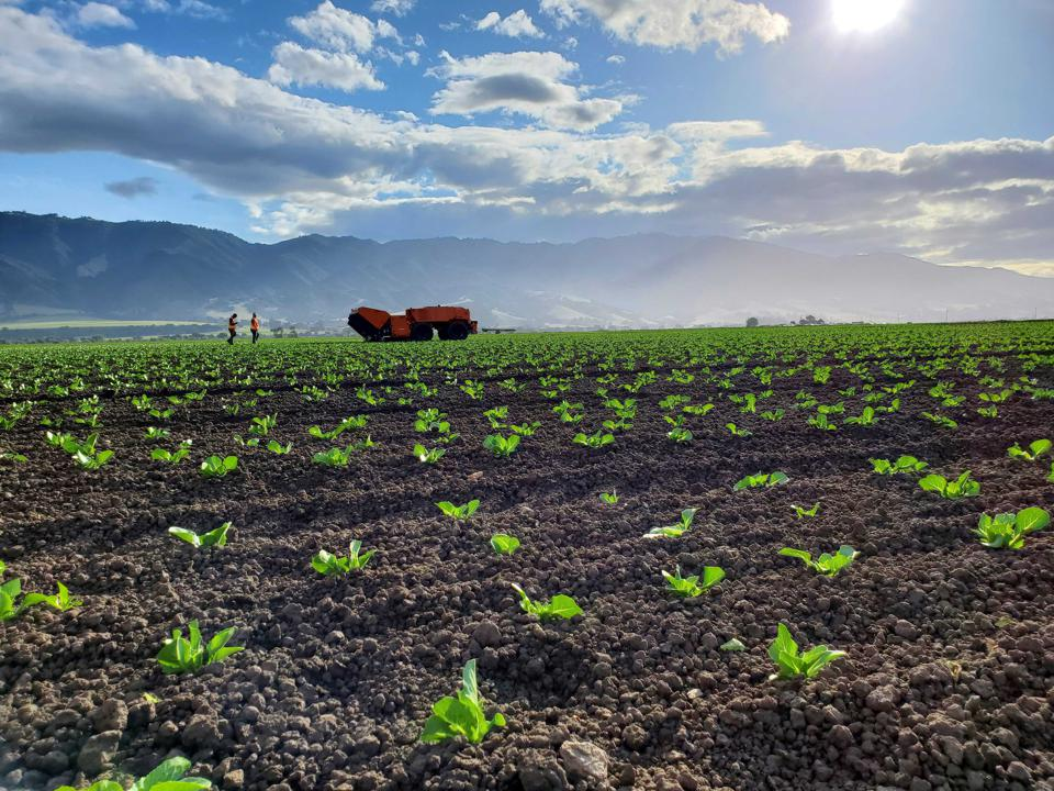 FarmWise, a California-based robotics startup, offers precision weeding as a service.