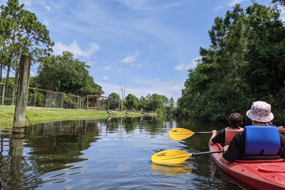 Kayaking at the Brevard Zoo on Florida's Space Coast.