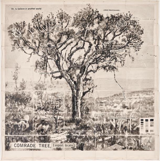 Comrade Tree I report to you