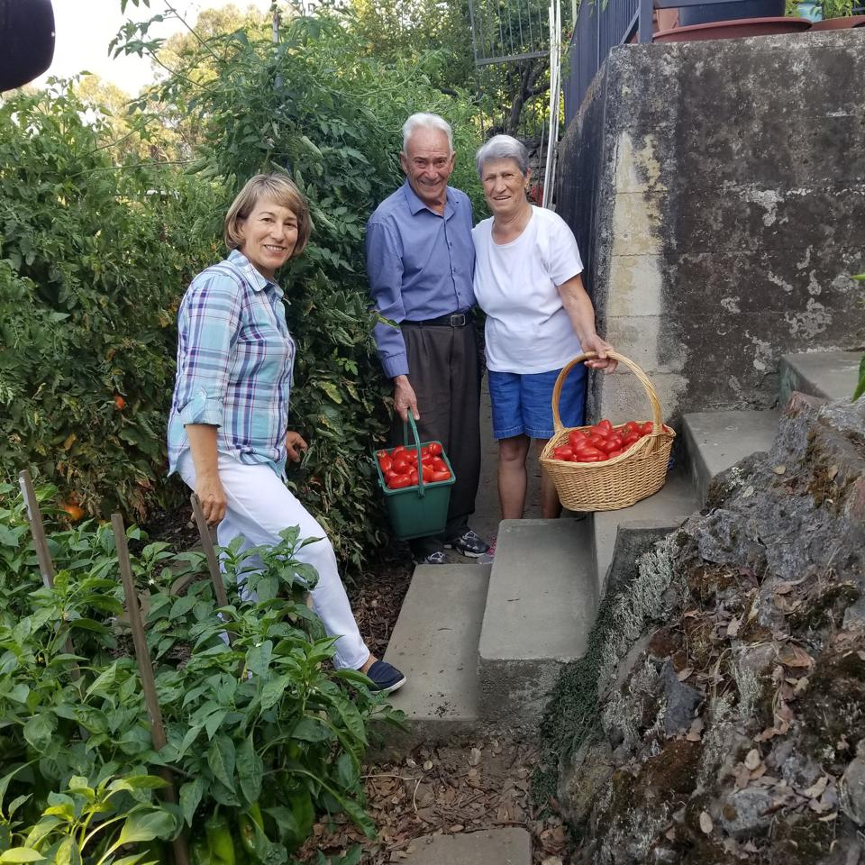 Rosetta Costantino with her parents Vincenzo and Maria in their garden with baskets of San Marzano tomatoes