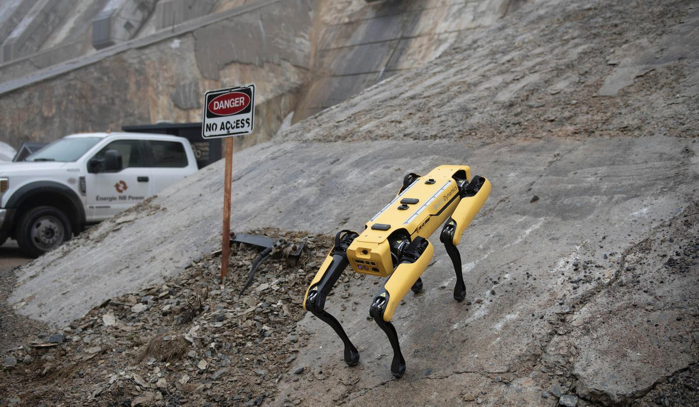 a robot dog is patroling an industrial site.
