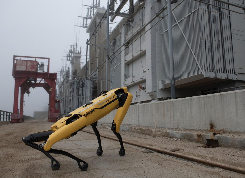 robot dog investigating industrial site.