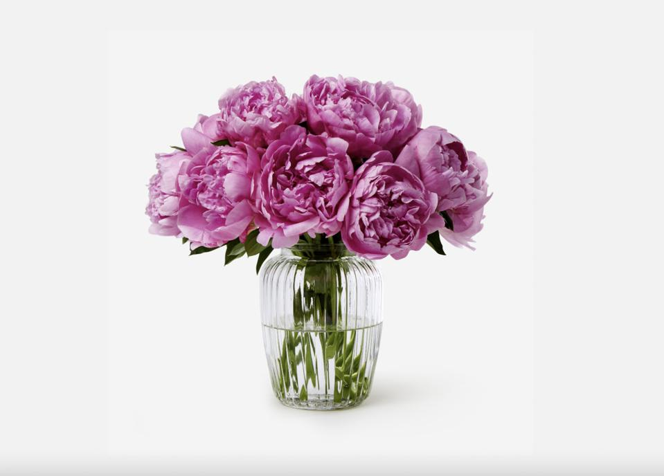bunch of pink bloom peonies in clear glass vase