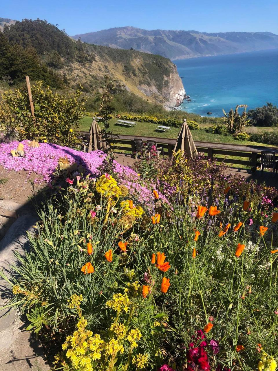 Lucia Lodge is located on the highway in the area known as Big Sur.