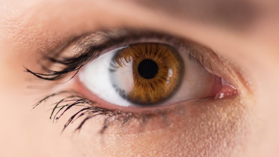 Brown eyes - close up