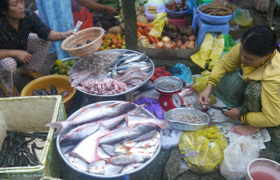Women selling various types of fish in a market
